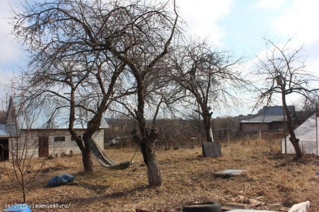 Дом в д. Потресово