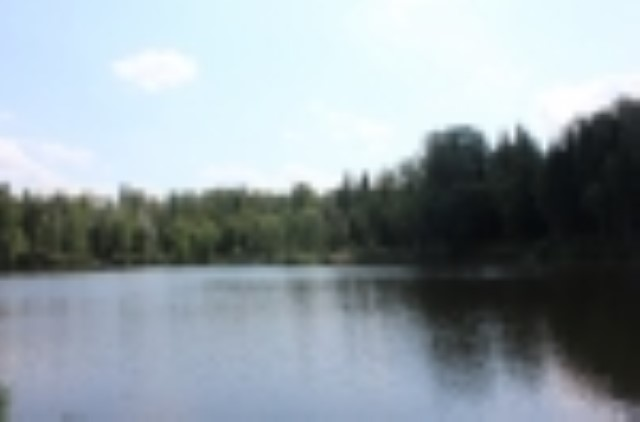 """Участок в КП """"Лесные Озера"""""""