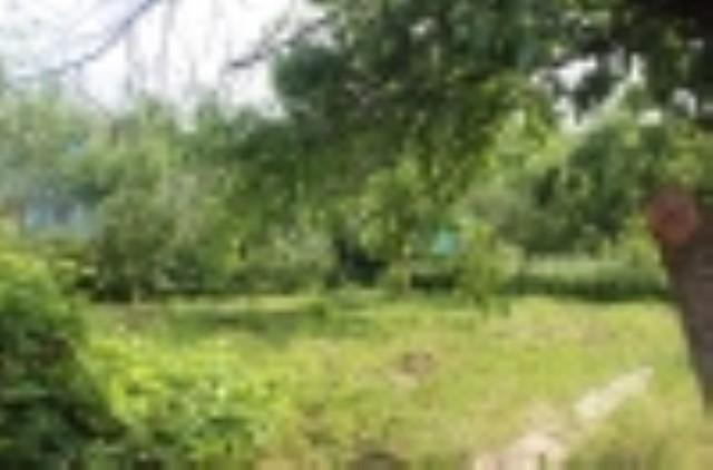 Дача в д. Русиново